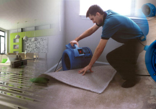 water damage barrows carpet & upholstery cleaning port richey florida