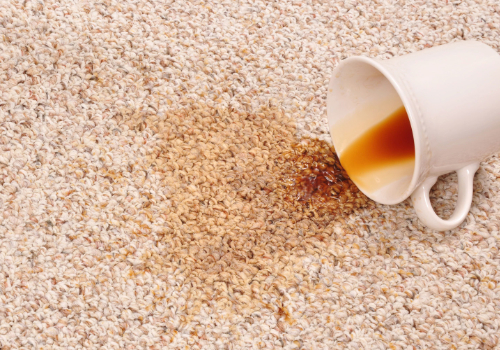 carpet stains barrows carpet & upholstery cleaning port richey florida